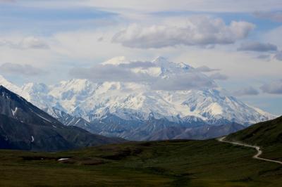 アラスカ 北の大地&野生動物(6/全9): デナリ国立公園 マッキンリー山鑑賞 アイルソン行きバス