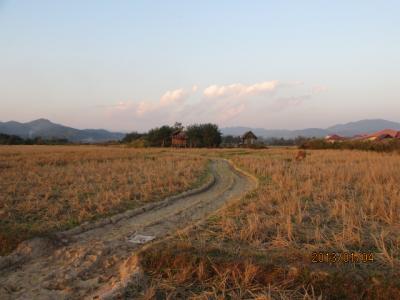 ラオス北部紀行(102)ラオスの田舎の夕暮れ時。