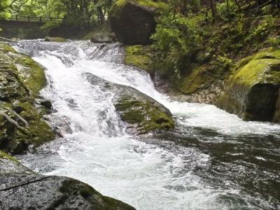 塩原温泉で夏休み(自然研究路散策)