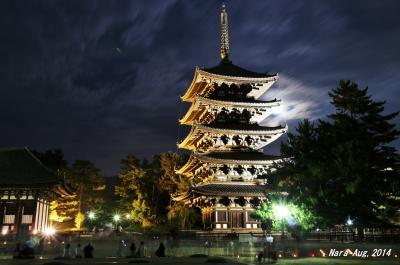 【奈良県(奈良)】 真夏の古都奈良にて夕涼み散歩~♪「なら燈花会2014」