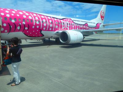 2014年 JALグループ(JTA 日本トランスオーシャン航空) 特典航空券の旅 沖縄旅行①