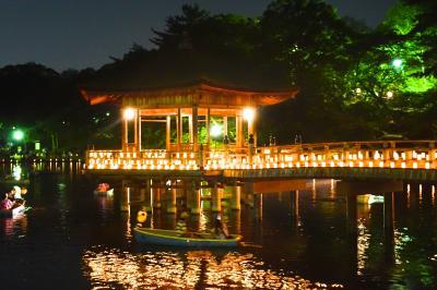 古都奈良の夏の風物詩『なら燈花会』を訪ねて