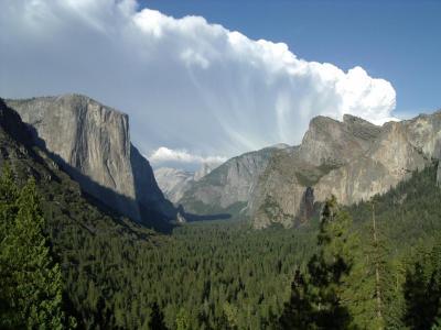 2004年 サンフランシスコ・ベイと大自然周遊(4 days) =Day 3= ~ヨセミテ国立公園~