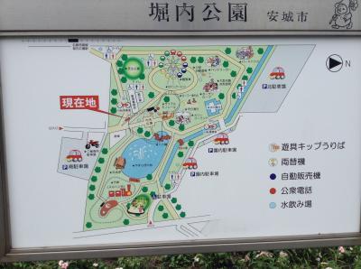 愛知県安城市の堀内公園での1日