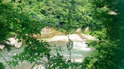 夏の鬼怒川温泉で森林浴♪