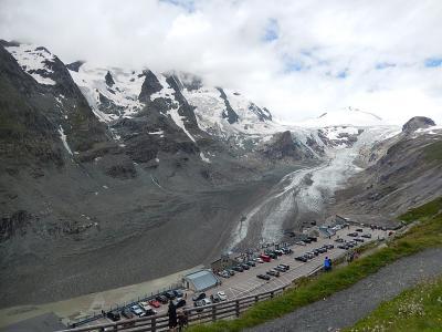 オーストリア三大名峰山麓ハイキング10日間の旅・・・・高山植物編⑥フランツヨーゼフ展望台付近