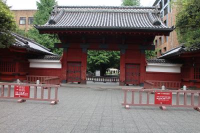 東京大学を ちょっこら散歩。。。♪