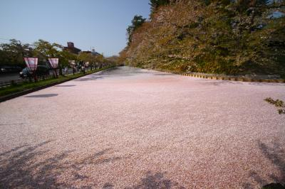 2014年_桜を求めて北東北1_弘前城の花いかだと弘前フレンチ