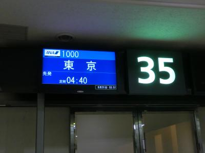 ギャラクシーフライトで沖縄へ(羽田へ)