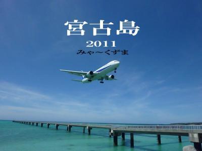 宮古島ダイビング 2011