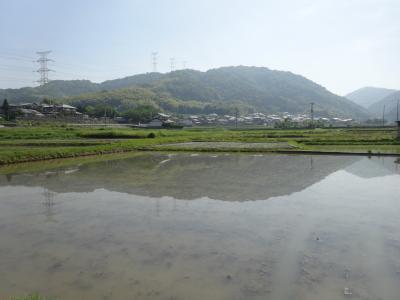2014年5月 出張兼休暇 in Japan(7) 井手町観光ラン!