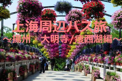 GW上海周辺バス旅4★揚州★鑑真ゆかりの大明寺とお花いっぱい痩西湖