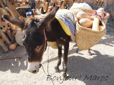 ボンジュー! モロッコ   (12) そして、再びのカサブランカ