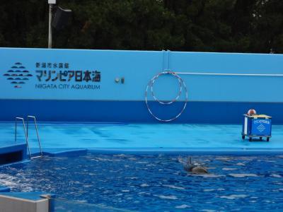 小学生最後の夏休み in 新潟