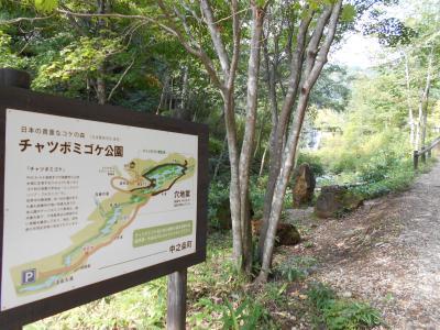 時間が出来たら、何となく旅に出る!(・。・;草津温泉/チヤツボミゴケ公園編♪