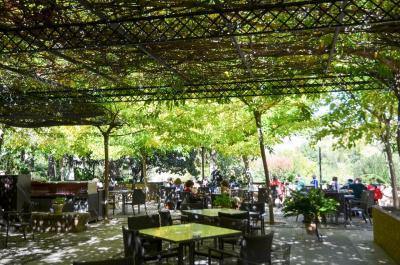スペイン・ローマ遺跡巡りの旅【6】アルハンブラ宮殿とその敷地内のパラドール(グラナダ) (2013/10/31)