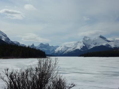 2012年春【4】・エアカナダ・ビジネスクラスで行く、ナイアガラの滝、カナディアンロッキー満喫の旅(ジャスパー観光・真っ白なマリーン湖)