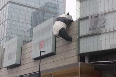 パンダ~を見に成都まで!