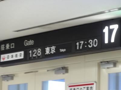 この日は伊丹空港17番スポットから出発です