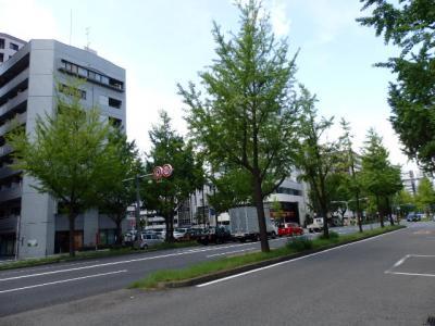 日本の旅 関西を歩く 大阪市の西大橋駅(にしおおはしえき)、心斎橋駅(しんさいばしえき)、動物園前駅(どうぶつえんまええき)周辺