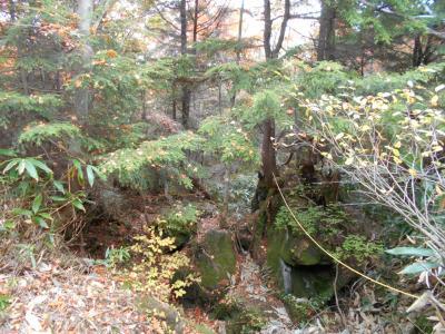 時間が出来たら、旅に出る♪(^・^)今年の紅葉は早い?(^。^;白根山「富貴原の池コース」後編。