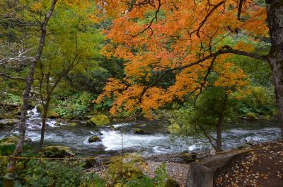 秋の北海道~層雲峡~