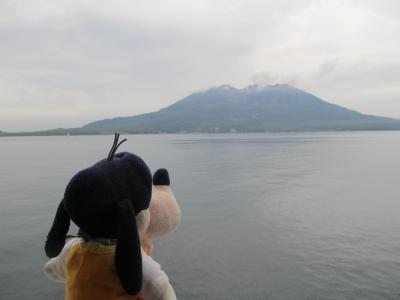 グーちゃん、屋久島へ行く!(サヨナラ!屋久島!楽しかったよ!編)