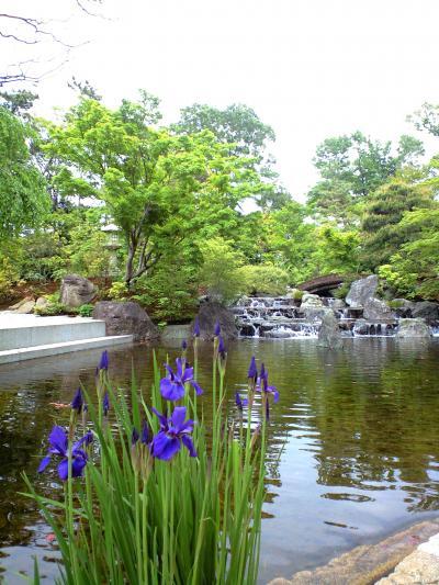 寒川神社 神苑