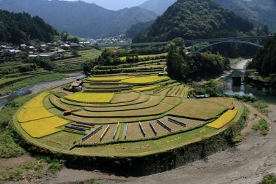 和歌山県有田川町の「あらぎ島」から生石高原の見ごろのススキが綺麗でした。