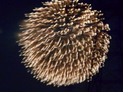 川幅日本一でギネス花火