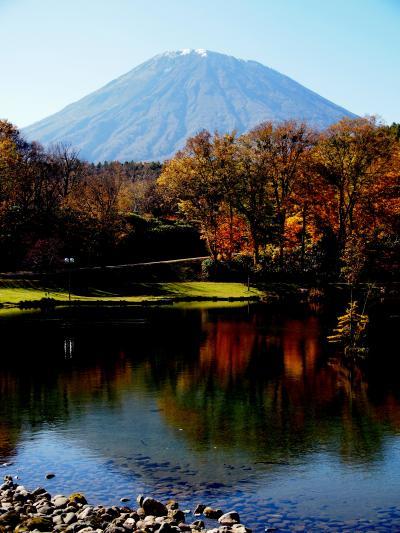 天気がいいので、紅葉の見頃も終盤、羊蹄山を見に京極町までドライブしました。