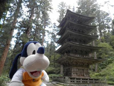 グーちゃん、庄内へ行く!(羽黒山/オスギが見た爺杉と五重塔!編)