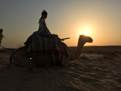砂漠のリゾート☆ドバイ観光