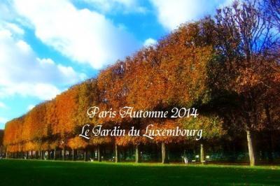 パリのお散歩 秋の装いみせる リュクサンブルグ公園 Jardin du Luxembourg