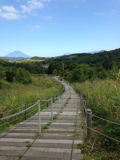 サンプリンセス北海道周遊クルーズ親子旅⑥室蘭から洞爺湖西山火口散策路☆大自然の中を大地の息吹を感じて歩きました。