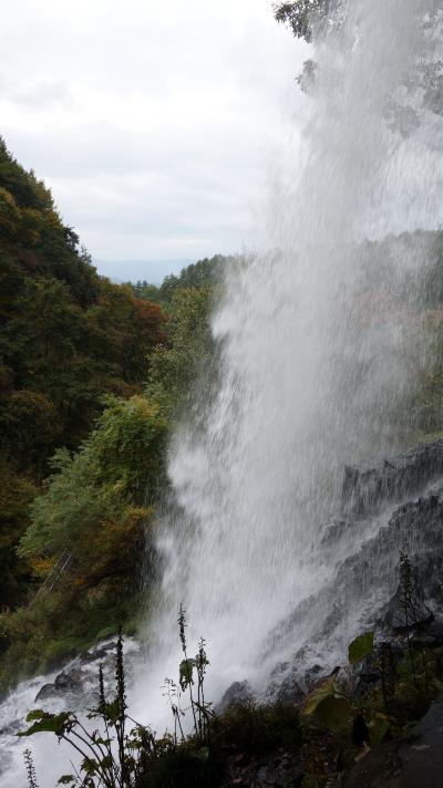 横谷渓谷の乙女滝に打たれる。水に打たれたのではなく,美しさに打たれました。
