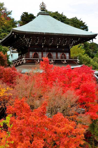 2013・「美しい瀬戸内」(広島周辺)をぶらりと巡る旅【3】~日本三景の地・宮島へ(紅葉に包まれる島内散策編)~
