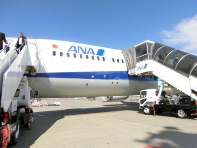 ANAボーイング787-9で行く東京・横浜旅行Part2 福岡→東京移動編(ANA248便)