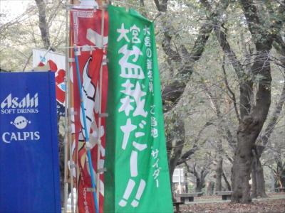 大宮公園を散策。