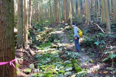 熊野古道大辺路コースを踏破。