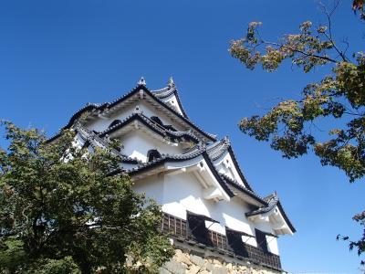 そうだ、京都へ行っちゃおう!久しぶりの京都一人旅、予定になかった彦根城へ。