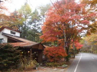 軽井沢の離山房に久しぶりに行きました。
