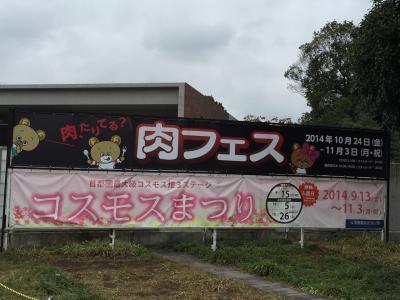 2014.11肉フェス in昭和記念公園