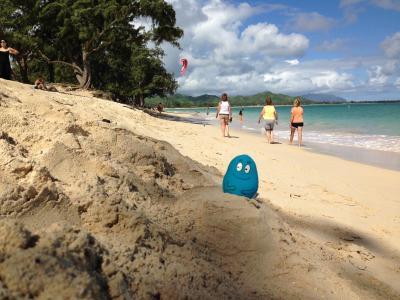 初めてのハワイ&今後の研究のために.パート2