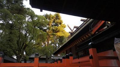 国宝の神殿での結婚式に参列 住吉大社にて