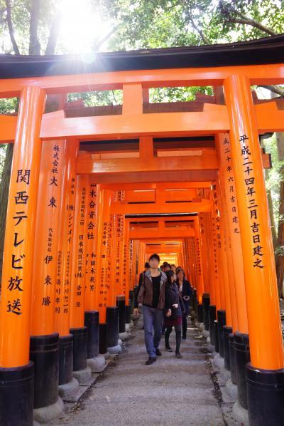 そうだ、京都、行こう!(紅葉が見頃になる前に)