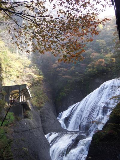 後ちょっとだったお初の紅葉狩り(^^ゞ袋田の滝と茨城最高峰八溝山の絶景、そして那須塩原アウトレット♪