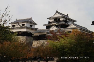 四国の100名城を訪ねて/丸亀城、松山城、宇和島城、高知城