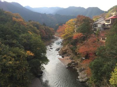 紅葉の御岳山