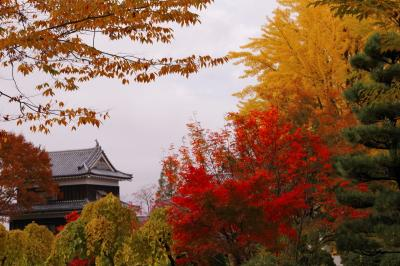 上田城址公園秋の彩り